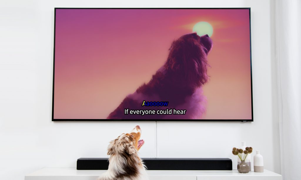 04_Dog-Karaoke_TV